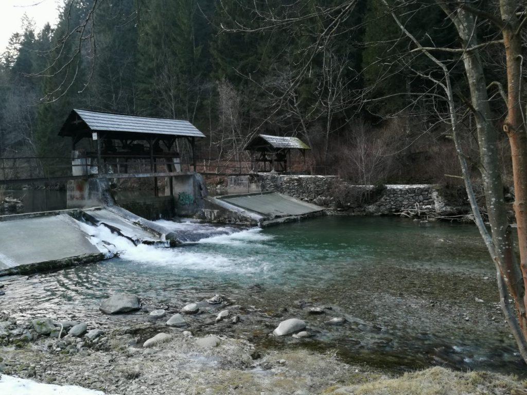 ladova-priroda-zima-rieka-stromy-