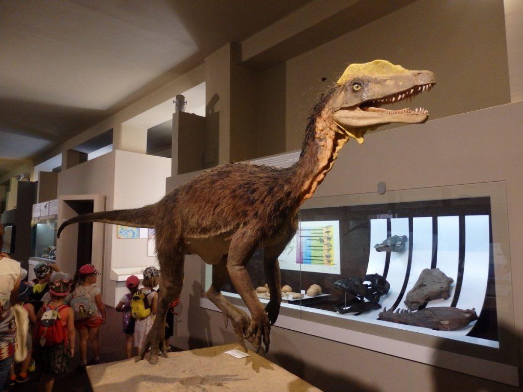 coeulosaurus-dinosaurus-druhohory-muzeum-historia