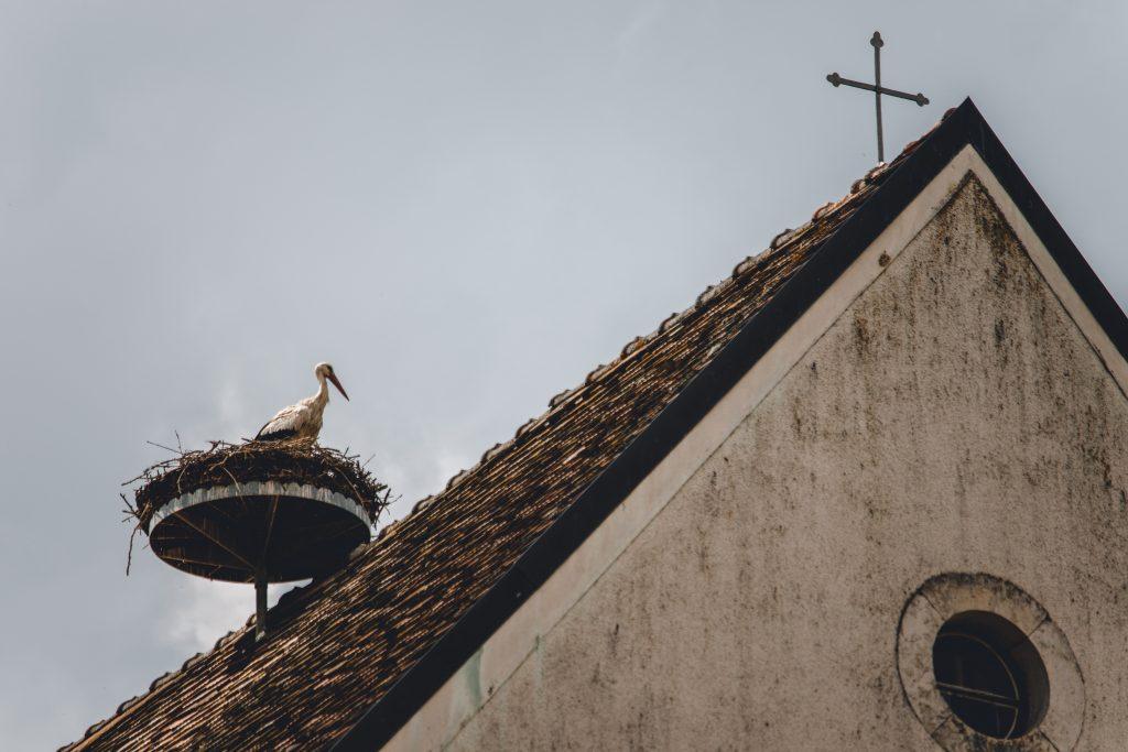 strecha-bocian-kostol-hniezdo-bocianopolis