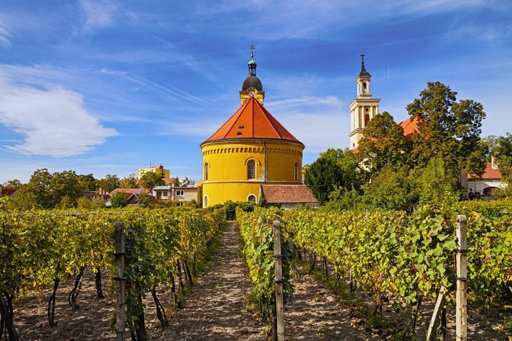 kostol-modra-pestovanie-vinica-vino-pole-obloha