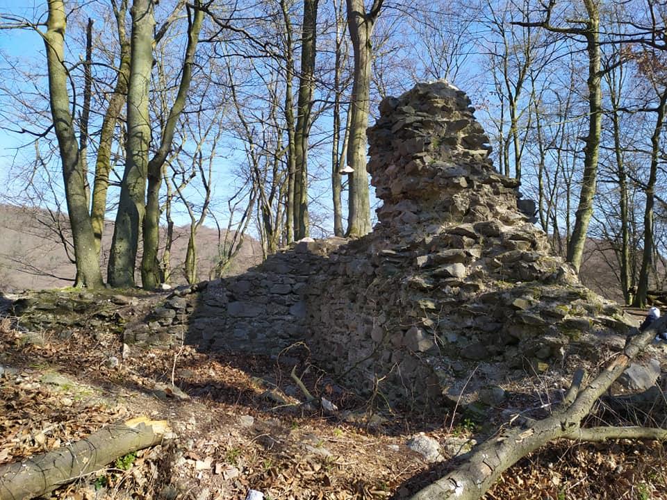 draci-hradok-hrad-zrucanina-les-priroda-skaly