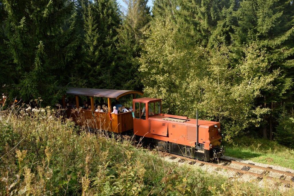 oravska-lesna-uvratova-zeleznica-les-kolajnice-atrakcia