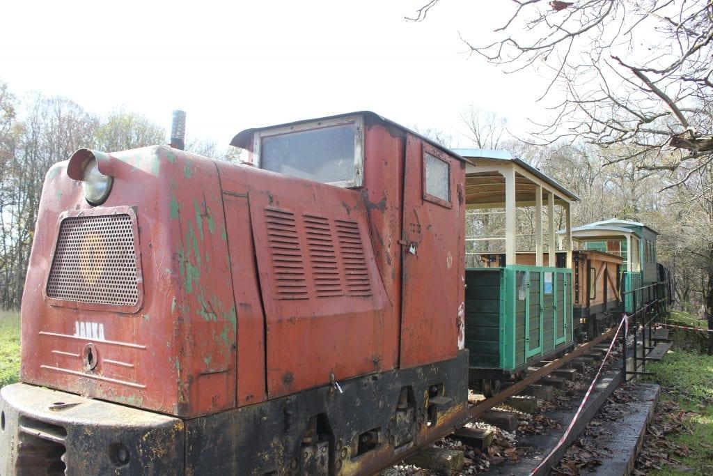 lesna-zeleznica-katarinka-lokomotiva-vagony-kolaje