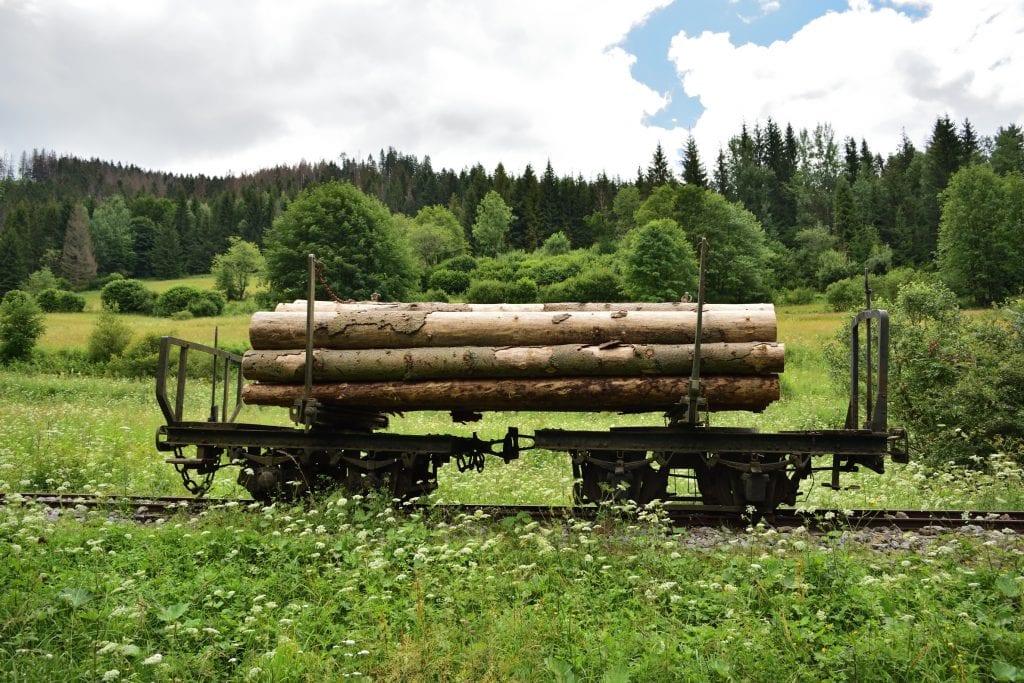 lesna-uvratova-zeleznica-zeleznica-drevo-les-vlak