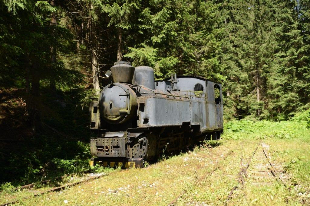 stara-parna-lokomotiva-les-lesna-zeleznica-vlak